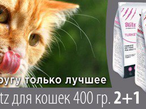 Акция! Blitz ADULT CAT 2+1